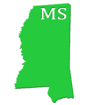 MS State Image