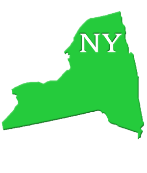 NY State Image